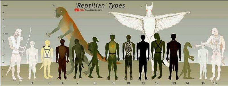 Reptilian_types