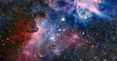 L'éveil du Starseed : Semence d'étoile, L'Esprit du Vivant