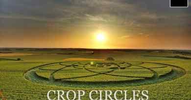 Tout ce que vous voulez savoir sur les crop circles (Agroglyphes) par Umberto Molinaro