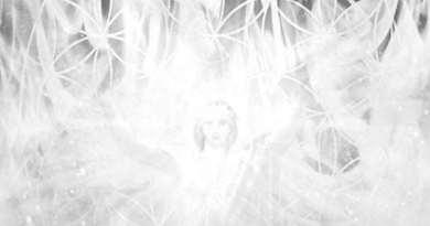 Feu blanc de AN : purification et transmutation