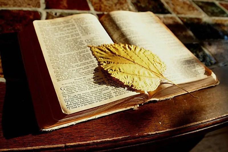bible-1166260_960_720