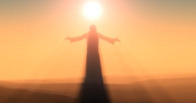 Laurent Dureau nous explique : L'Objectif Ultime l'Ascension (s'aligner avec son Christ Solaire 24D)