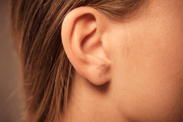 ear_anatomy_750-600x400