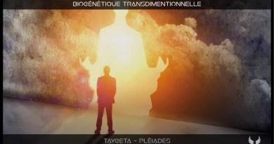 Biogénétique transdimensionnelle et expérience de la cabale reptilienne (abductions etc.)