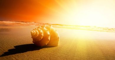 L'alimentation multidimentionnelle – Causerie avec Yoann Demmer et Mary M'