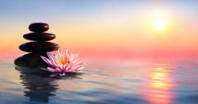 Être Zen et le Rester par Christophe ANDRE
