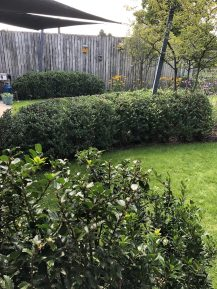 speelse tuin m