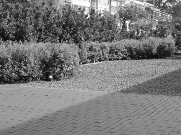 speelse_tuin_tuinarchitect_geel1