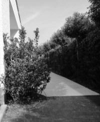 speelse_tuin_tuinarchitect_geel4