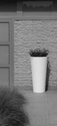 Tuinarchitect_geel_voorbeeld_speelse_tuin14