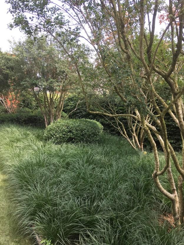 Voorbeeld_speelse_tuin_tuinarchitect_geel2