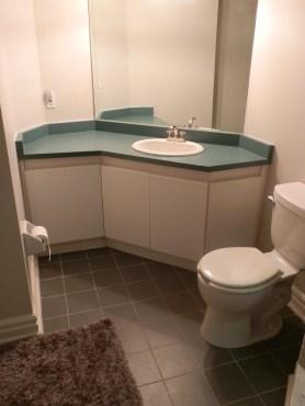 vanity area before