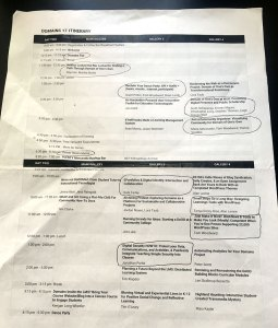 Itinerary for Domains—click to view larger. The circled items are the sessions I attended.