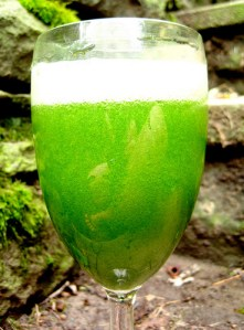 The Power of Green Juices