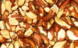 Excellent Iron Sources for the Raw Vegan