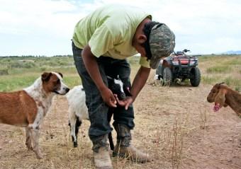 Goatherder Weaver Ranch, Colorado © Eve Bernhard. August, 2011