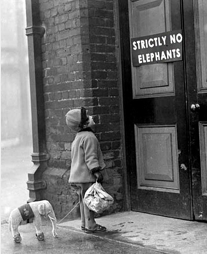 StrictlyNoElephants:EVE