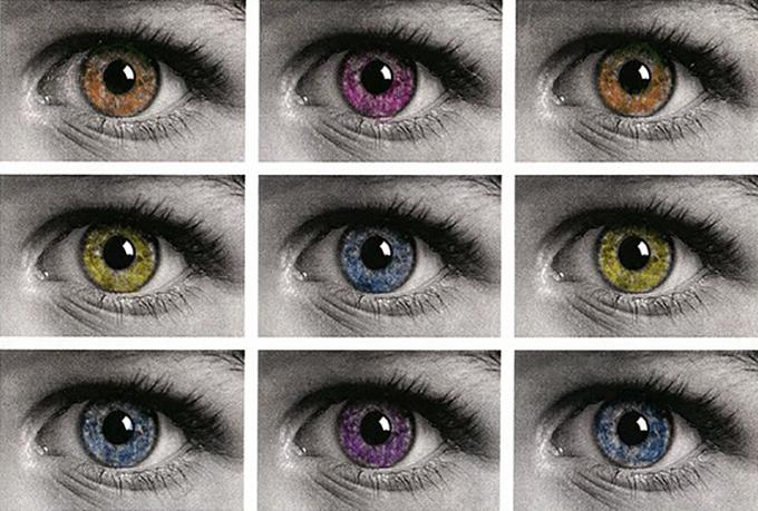 Museo y Objetos: 6 Leyes de Percepción