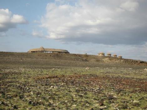 desert-museum