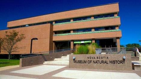 museum-of-natural-history-halifax-51751