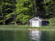 Lake Ann, MI