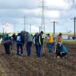 plantam-voluntariat