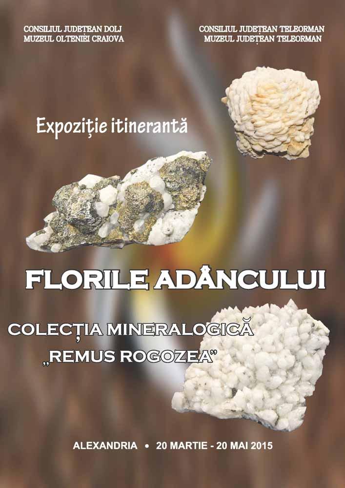 afis expo Florile Adancului