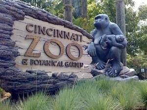 cincy-zoo