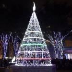 2014年11月28日(金)~12月25日(木)クリスマスマーケット in さいたま新都心けやきひろば / さいたま新都心けやきひろば
