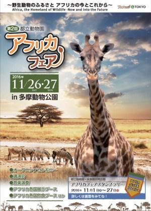 第2回アフリカフェア in 多摩動物公園のフライヤー1