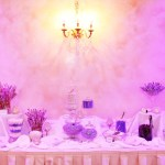 lehigh valley wedding newly renovated ballroom | custom wedding touches | candy bar for wedding