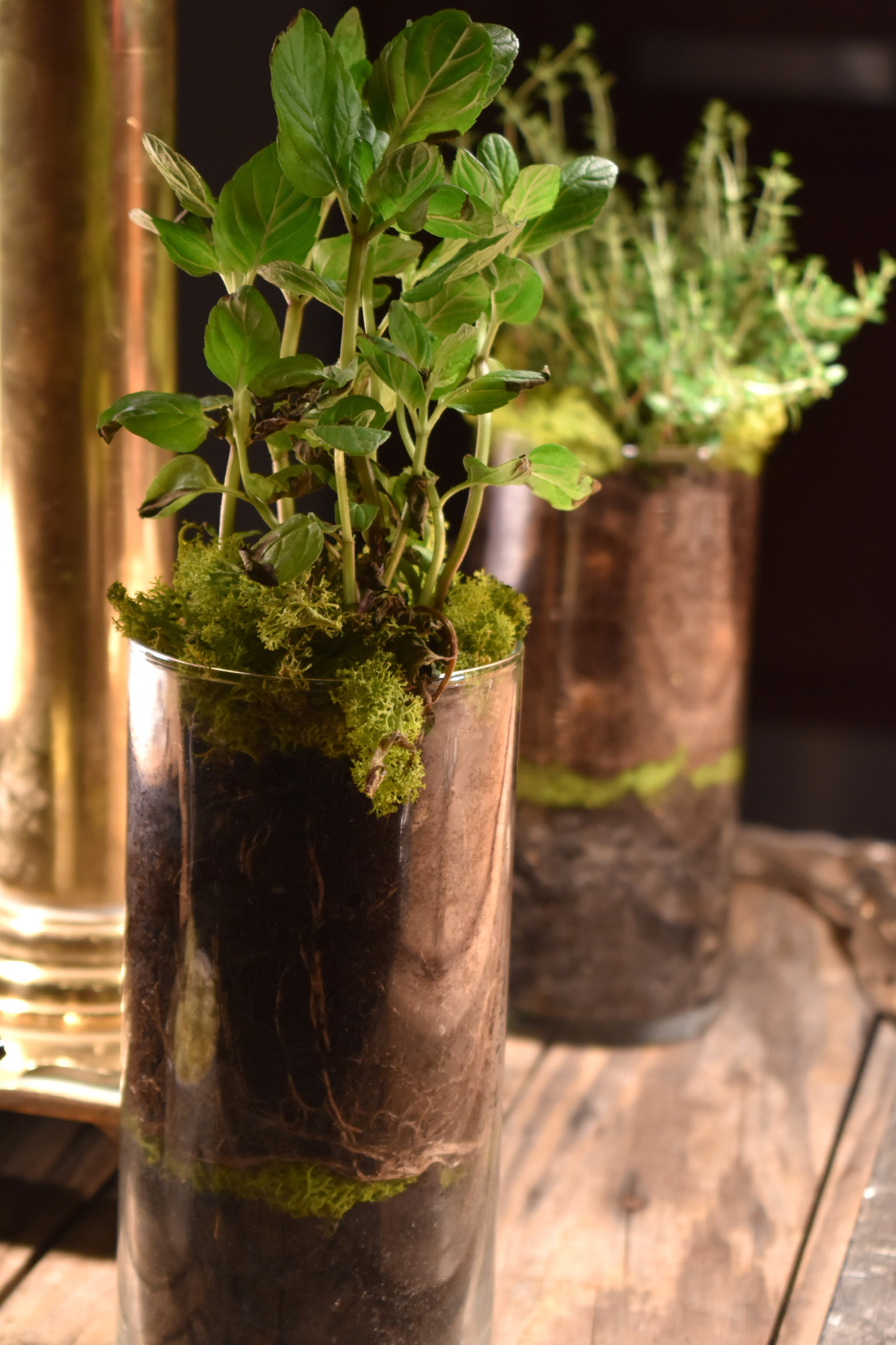 fresh herb centerpiece