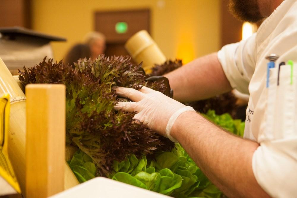 hydroponic lettuce garden ritz carlton amelia island live kitchen