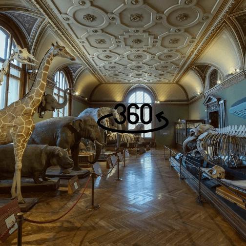 museum hunt