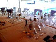 Cata de Gin tonics en toda España