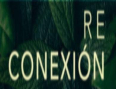 Reconexión Room Escape Online