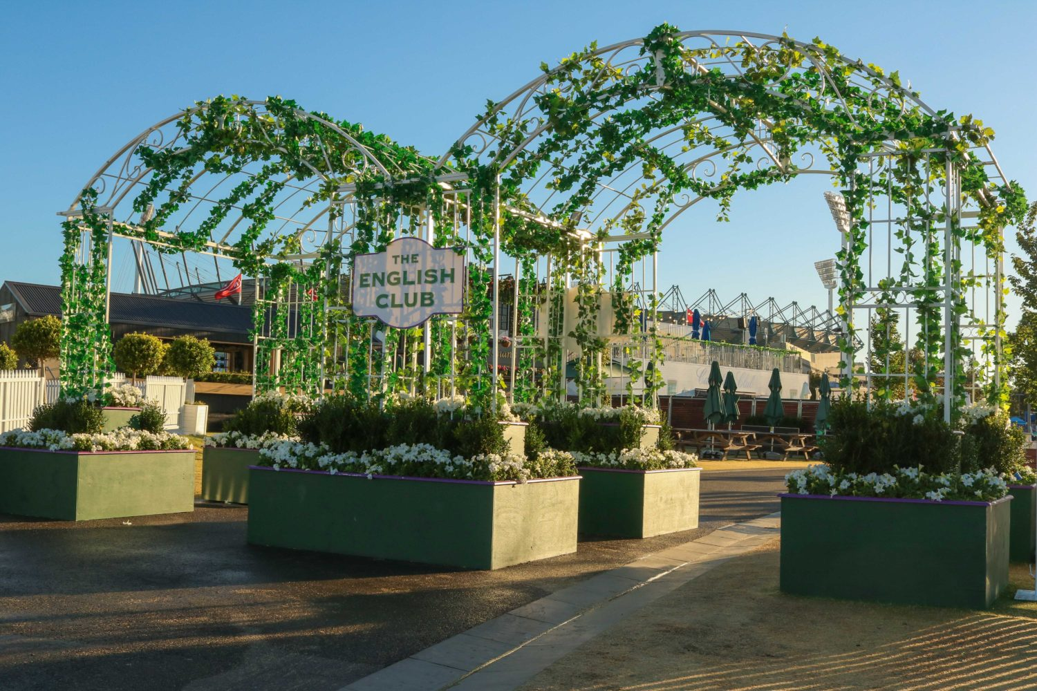 Styling english club petunia buxus event plants melbourne hire