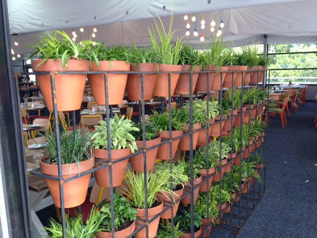 Free standing pot wall event plants hire