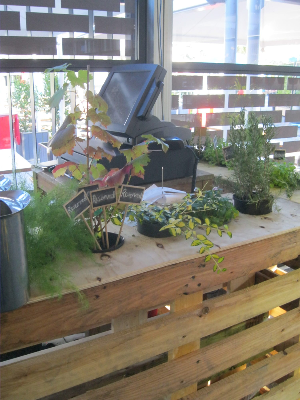 plants pallet planter box