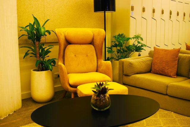 Happy monstera succulents terrarium display event plants hire melbourne
