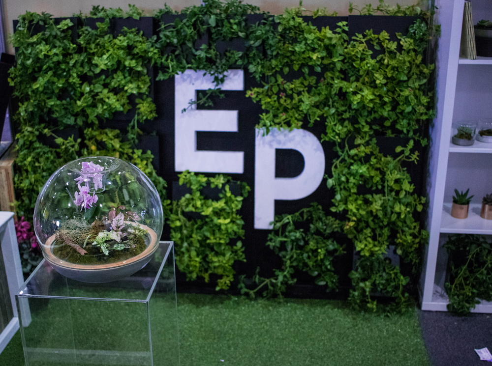 Green Wall Event Plants Hire Melbourne