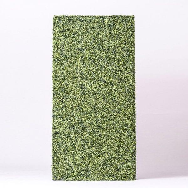 A Grass Frame