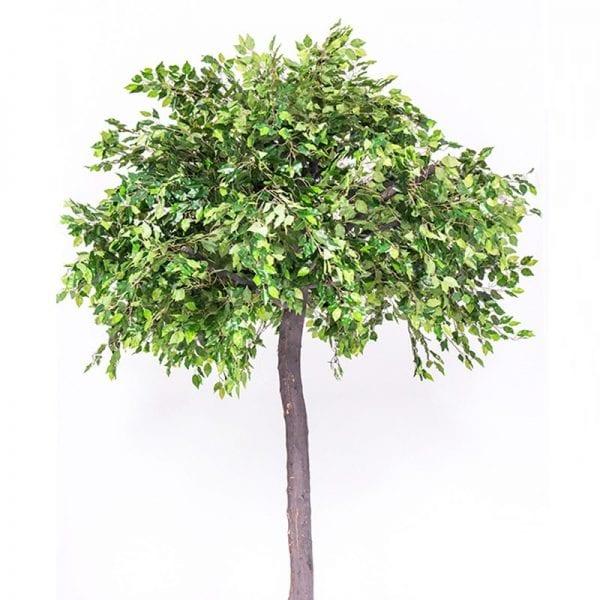 An Tree