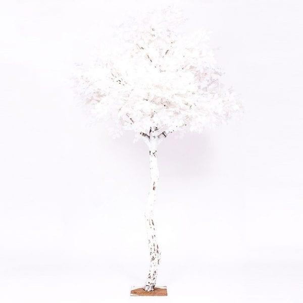 White Tree Stand