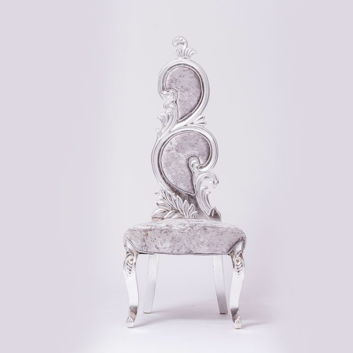 A Beautiful Silver Velvet Chair