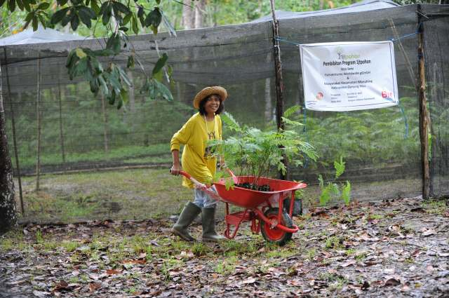 Distributing seedlings from the tree nursery.