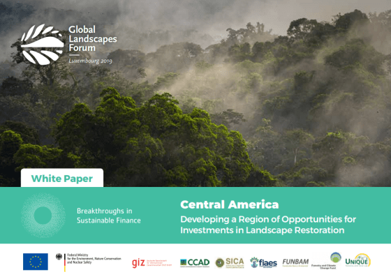 Central America: Developing a Region of Opportunities for investments in Landscape Restoration