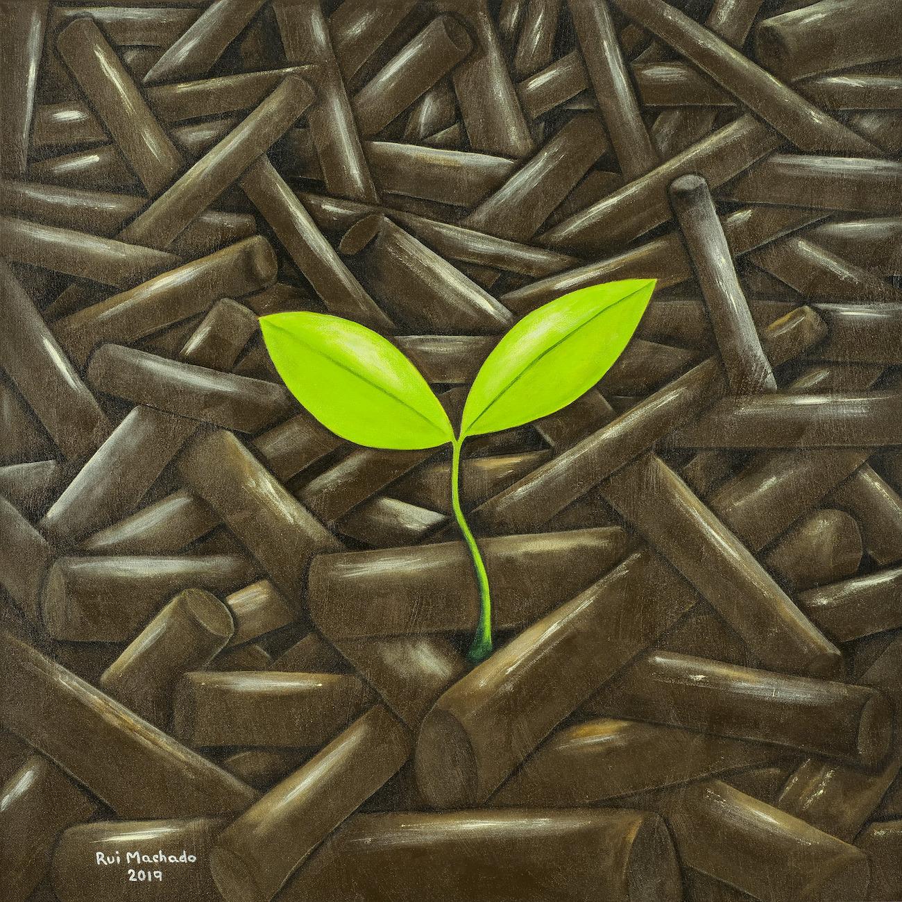 """Série: """"Amazônia: Arte & Fatos"""", (50 x 50 cm), acrílica sobre tela, 2019"""