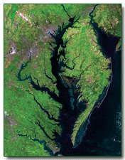 Landsat image of the Chesapeake Bay region