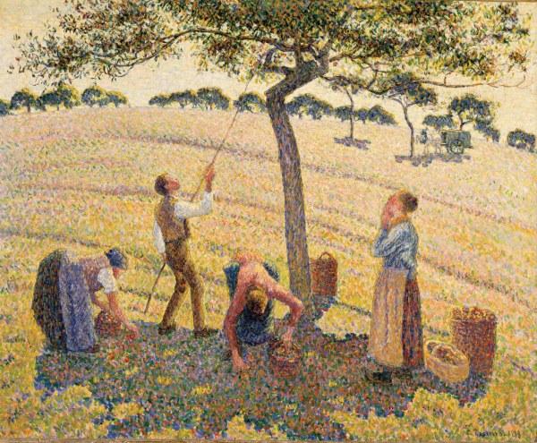 Camille Pissarro Apple Harvest